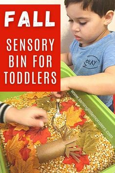 Create a super easy sensory bin with corn and Fall leaves. Toddlers and preschoolers will love exploring this Autumn themed activity. #fall #autumn #sensory #toddler #preschool Sensory Activities For Preschoolers, Autumn Activities For Kids, Montessori Activities, Infant Activities, Toddler Preschool, Preschool Activities, Fall Sensory Bin, Baby Sensory, Sensory Bins
