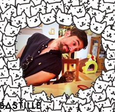 meaning of bastille flaws
