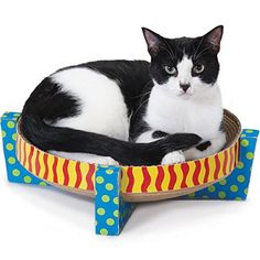 petstages snuggle scratch and rest  cat gift cat bed petstages 710 invironment easy life hammock scratcher cat      rh   pinterest