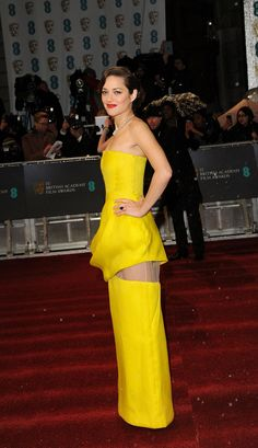 Marion Cotillard in Christian Dior Couture at the 2013 BAFTA Awards in London