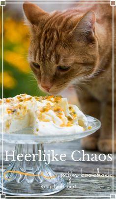 Ik heb mezelf de uitdaging gegeven om alle recepten uit een enkel Donna Hay tijdschrift te koken. te beginnen met deze heerlijke yoghurt bosbessen cake