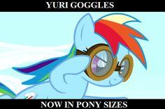 Rainbow Dash Meme | strangething: My Little Pony Memes: Rainbow Dash is a lesbian