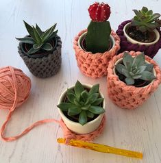 Plant pot covers-free crochet pattern by hello moon crochet. Crochet gift ideas using t shirt yarn, ribbon or any chunky yarn Crochet Planter Cover, Crochet Plant Hanger, Crochet Home, Crochet Gifts, Diy Crochet, Crochet Cactus, Crochet Flowers, Crochet Basket Pattern, Crochet Patterns