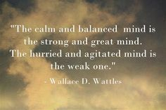 The calm and balanced mind is the strong and great mind. The hurried and agitated mind is the weak one.