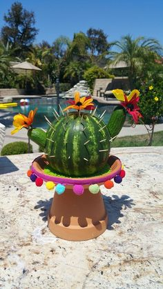 Cactus watermelon