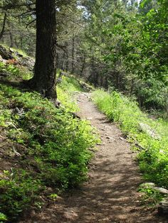 The Miner's Path. Travel English, Places Ive Been, Paths, Country Roads, Eyes, Pathways, Walkways