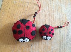 A mother lady bug and her puppy