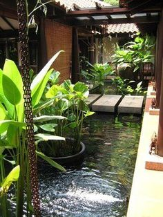 Banana trees (?) And water feature, bali style