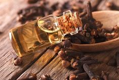 Clove essential oil can be used to fight several health problems such as cholesterol, weight problems. It is a good aphrodisiac, antiseptic and anelgetic. Remedies For Tooth Ache, Remedies For Nausea, Flu Remedies, Headache Remedies, Essential Oil For Cuts, Clove Essential Oil, Cloves Benefits, Oregano Oil Benefits, Clove Oil For Teeth
