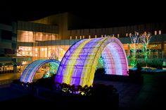 ららぽーと柏の葉イルミネーション 植栽部分に特注LED(RGBグラデーション)を使用し「川」を表現。 アーチ部分には、特注LED(RGBグラデーション)と、側面発光の特殊な光ファイバーMACBEAMを使用し、「虹」を表現してます。