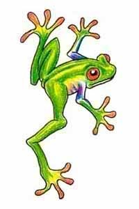 I also use watercolor pencils - when I was younger I toyed with the idea of getting a tattoo and the only thing I could think of was a cute little tree frog!