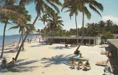 Crandon Park Cabanas~Key Biscayne - Sunday afternoons after church. We kids went to the zoo from here! Old Florida, Central Florida, Miami Florida, South Florida, Miami Beach, Key Biscayne Beach, Key Biscayne Florida, Miami Images, Crandon Park