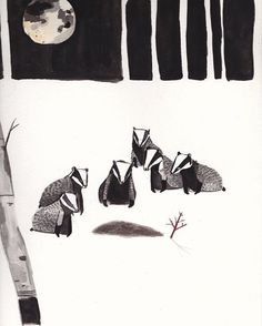 «According to folk lore Badgers bury their dead and even perform a burial #badgerawarenessday #dickvincent #badger»