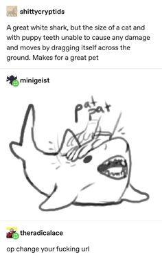 shittycryptids A great white shark, but the size of a cat and with puppy teeth unable to cause any damage and moves by dragging itself across the ground. Makes for a great pet &theradicalace op change yourfucking url - iFunny :) Stupid Funny, Funny Cute, Hilarious, Animal Memes, Funny Animals, Cute Animals, Tumblr Funny, Funny Memes, Funny Tweets
