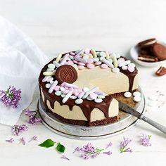 Pastellinsävyinen Domino-kakku - Fazer