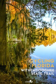 Cycling Florida's Withlacoochee State Trail is fun for the whole family. Part of the national Rails-to-Trails program, the 46-mile smooth trail in central Florida makes a perfect place to pedal, walk, or ride horseback.