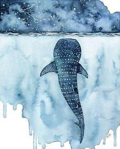 whale shark painting - Google Search
