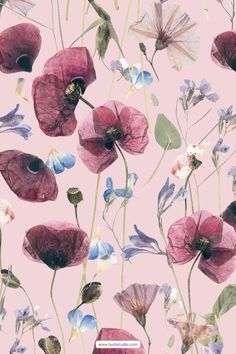 Carefully hand picked and dried florals with subtle elegance, developed into seamless repeat patterns and also comes with all the individual elements. Perfect for a variety of various use from fabric prints to packaging, invitation cards and much more. #prints #patterns #surfacedesign #textiledesign #textilepatterns #driedflowers #poppies #softflowers #elegantflorals #meadowflorals #luxurypatterns #watercolours #handmadeart Textile Patterns, Textile Design, Print Patterns, Invitation Cards, Invitations, Repeating Patterns, Beautiful Patterns, Handmade Art, Surface Design