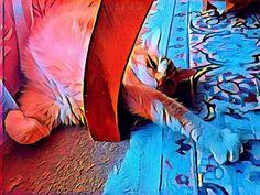 Lazy days #Tristan #Stretch #Prisma @prisma