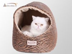 Armarkat Cat Bed, Bronzing and Beige - I Heart My Cats Bed Images, Owning A Cat, Tiger Stripes, Cat Supplies, Pet Beds, Pet Store, Cat Toys, Small Dogs, Cats And Kittens