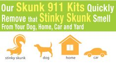 A great eco alternative to getting rid to super nasty smells in your house and car...especially skunk odor.