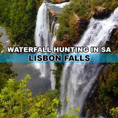 Waterfall hunting in South Africa is a perfect way to plan an off the beaten track holiday - Lisbon Falls Amazing Photography, South Africa, Waterfall, Hunting, Around The Worlds, Adventure, How To Plan, History, Outdoors