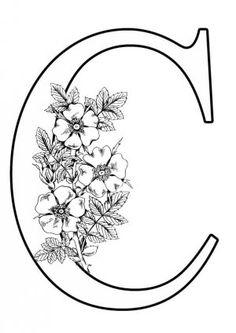 A4 Letter C