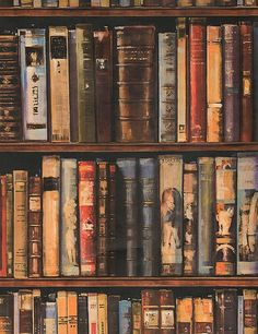 Don't you just love the look of a full bookcase........
