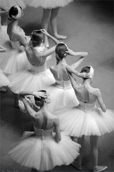 Tulle. Dancer / ballerinas / bailarinas.
