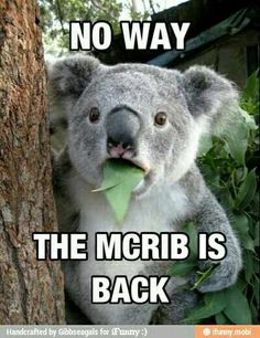The McRib is back !!!!