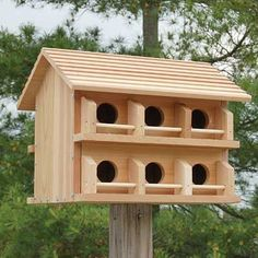 Install the Heath Cedar Purple Martin House in your lawn or garden to offer martins a beautiful place to colonize. Capable of housing up to twelve separate martin families, this house features cozy ap
