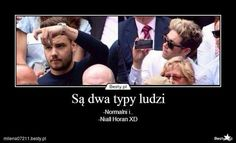 One Direction Cartoons, One Direction Harry Styles, One Direction Memes, Naill Horan, Funny Mems, Band Memes, 1d And 5sos, Reaction Pictures, Pranks