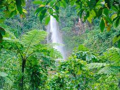 Havasu Falls Iphone 6 Wallpaper 47 Best Waterfalls Images Free Screensavers Paisajes