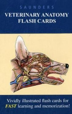 Saunders Veterinary Anatomy Flash Cards, 1e by Saunders. $40.95. Edition - 1 Crds. Publication: December 30, 2009. Publisher: Saunders; 1 Crds edition (December 30, 2009)