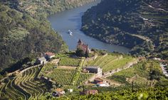 Douro, one of the 6 of Europe's coolest wine regions every traveller will want to visit | via Wanderlust Travel Magazine | 17/09/2017 Douro is a Portuguese wine region centred on the Douro River east (up river) of Porto. The region is sheltered from Atlantic winds by mountains and has a Mediterranean climate. While the region is associated primarily with Port wine production, the Douro produces just as much table wine (non-fortified wines) as it does fortified wine. #Portugal