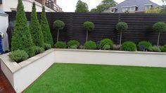 Contemporary Garden Design Ideas For Small Gardens provided Landscape Gardening Franchise near Landscape Gardening Kilmarnock. Black Garden Fence, Garden Fencing, Black Fence, Garden Shrubs, Fence Plants, White Fence, Garden Pool, Green Garden, Garden Bed