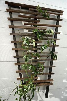Image result for rustic trellis