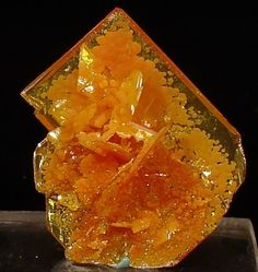 Wulfenite, San Francisco Mine, Mexico (miniature)