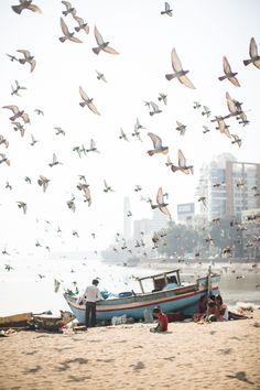Mr. Todiwala's Bombay - <em>Hardie Grant Books</em> — Helen Cathcart