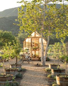 Farmhouse landscaping - Patina Farm Gardens and Guest House in 805 Living and a Washington Post Chat – Farmhouse landscaping The Farm, Build A Greenhouse, Greenhouse Gardening, Window Greenhouse, Greenhouse Ideas, Vegetable Gardening, Container Gardening, Farmhouse Landscaping, Landscaping Tips