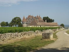 Découverte touristique de Monbazillac Dordogne Aquitaine