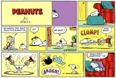 Image result for snoopy comic