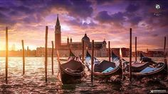 present  I G  O F  T H E  D A Y  P H O T O |  @krenn_imre  L O C A T I O N | Venice-Veneto-Italy  __________________________________  F R O M | @ig_europa  A D M I N | @emil_io @maraefrida @giuliano_abate S E L E C T E D | our team  F E A U T U R E D  T A G | #ig_europa #ig_europe  M A I L | igworldclub@gmail.com S O C I A L | Facebook  Twitter M E M B E R S | @igworldclub_officialaccount  F O L L O W S  U S | @igworldclub @ig_europa  TAG #igd_011016…