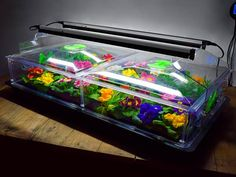 https://www.quickcrop.co.uk/product/vitopod-90cm-light-and-support-kit-for-propagator #vitopod #propagator #seedlings #growlight