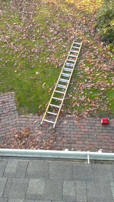 """""""I was putting up Christmas lights, but now it looks like I'm stuck on the roof for the time being. Shit."""" - Imgur"""
