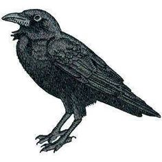 Awesome Smaller  Raven Crow Black Bird Steam Punk Iron ON Patch 100% embroidery. $8.00, via Etsy.