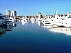 A Stroll along the Marina Vallarta. The Official Puerto Vallarta Travel Guide Puerto Vallarta, Two Worlds, San Francisco Skyline, Travel Guide, Places Ive Been, New York Skyline, Travel Destinations, Tourism, Places To Visit