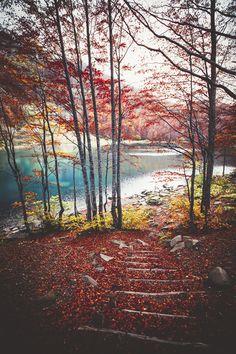 http://blog.avisiblesignofmyown.com/post/104506832368/autumn-glory