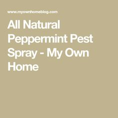 All Natural Peppermint Pest Spray - My Own Home