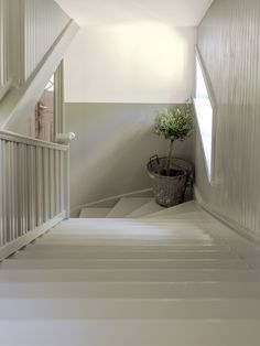 Two Tone Walls, Modern Home Interior Design, Interior Decorating, Stairs, Elegant, Painting, Home Decor, Staircase Ideas, Corridor